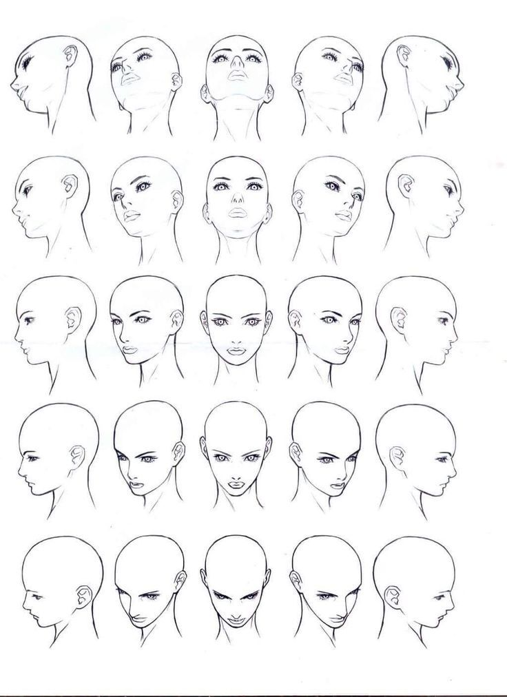 Pin By Hải Tiến On Ref In 2020 Face Drawing Reference Face Drawing Drawing Heads