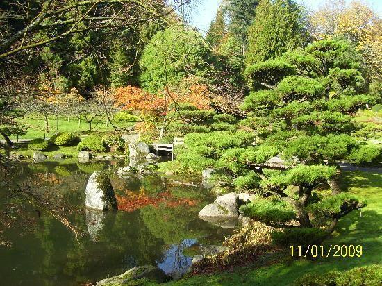 ae85e0986fbbb5f5edc3a41a167c5a38 - Things To Do In Tea Gardens