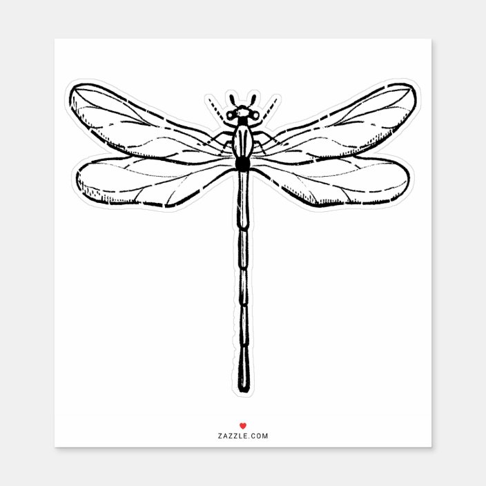 Vintage Dragonfly Black And White Sticker Zazzle Com In 2021 Dragonfly Drawing Wrist Tattoo Cover Up Vintage Dragonfly