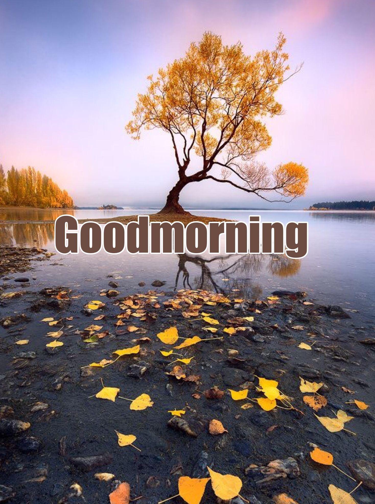 Morning Motivational Quotes Pinr Sreeranjini On Good Morning  Pinterest  Motivational