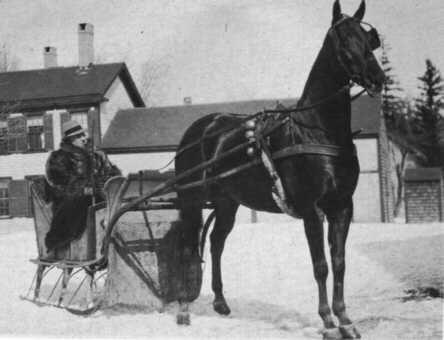 LaDelle 1921 M