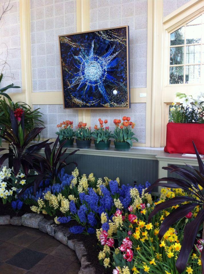 Druid Hill Park Conservatory Spring Flower Show