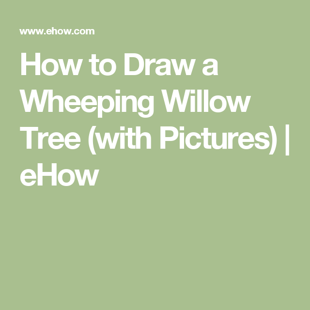 How To Draw A Wheeping Willow Tree