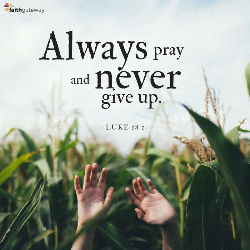 perseverance in prayer | Prayers | Bible verses quotes ...