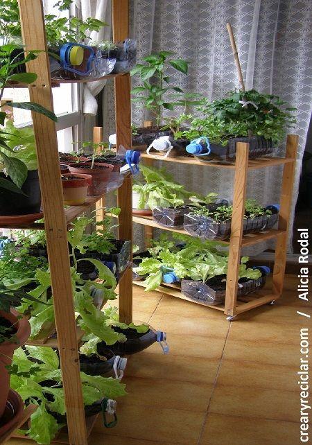 Si tienes una ventana tienes una huerta no hace falta for Como tener un jardin en casa