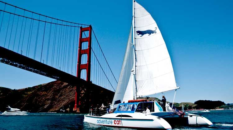Annual day on the bay with vwe board the adventure cat 2