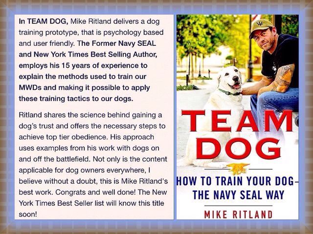 My Review Of Mike Ritland S Team Dog Navy Seals Training Tips