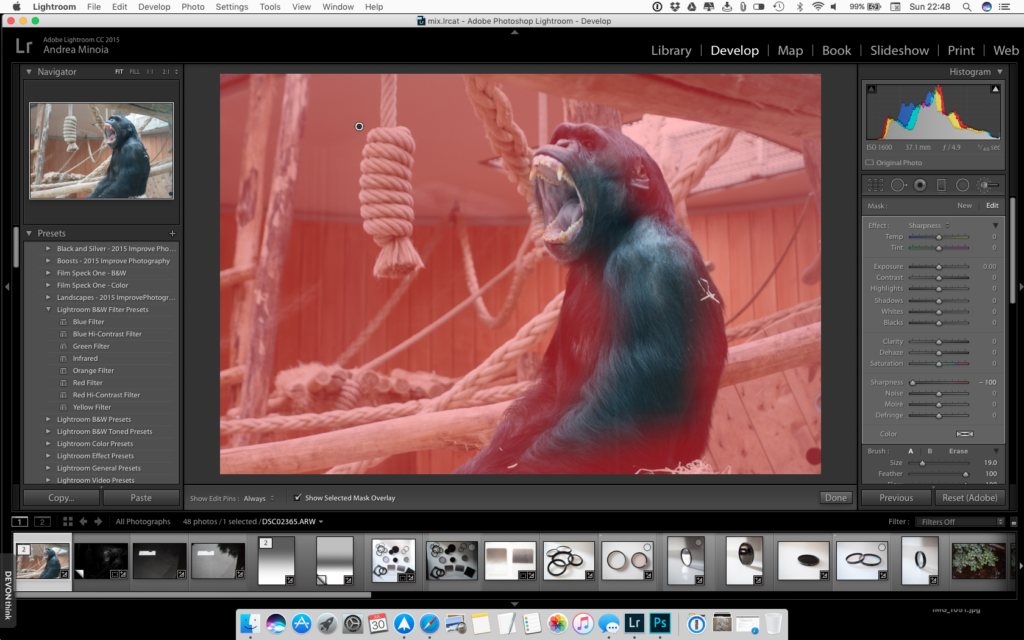 How to blur a background in lightroom