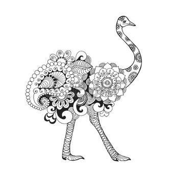 coloring pages print: Aves avestruz. Mano blanco y negro dibujado ...