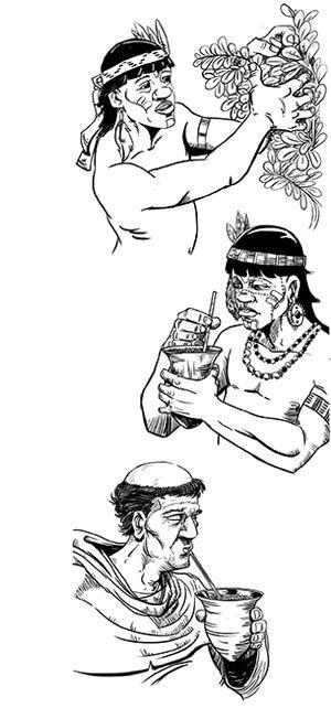 yerba-origenes