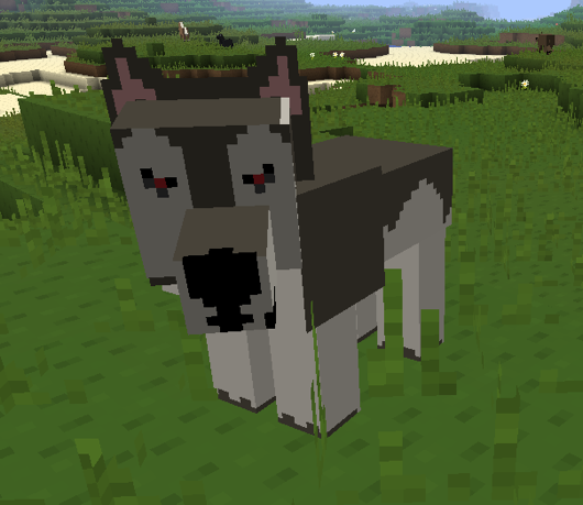How To Get A Husky In Minecraft