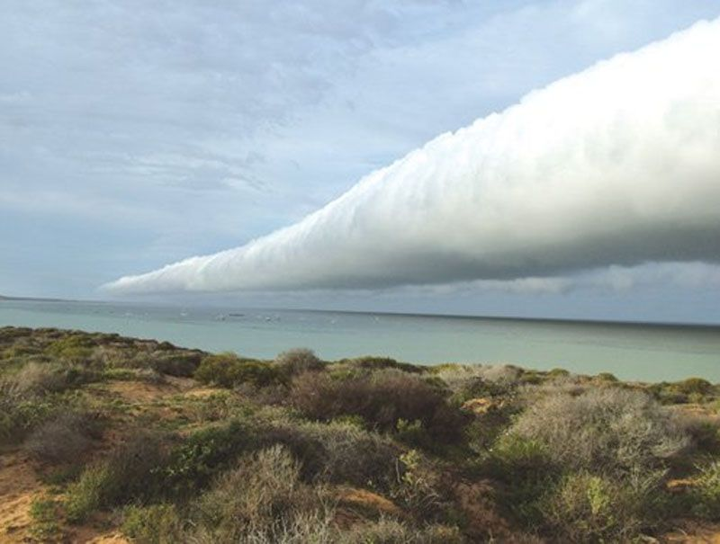 Roll cloud: This is a horizontal tube of cloud that forms in the cold downdraughts that spread out ahead of an approaching storm (or, less commonly, at the tail end of a decaying storm).    The rapidly sinking air mass can hit the surface so hard that it sends a wave of air gusting some distance away from the storm cloud itself. It can often be several kilometres long, as is the case with this impressive example seen heading inland over Shark Bay, Western Australia.