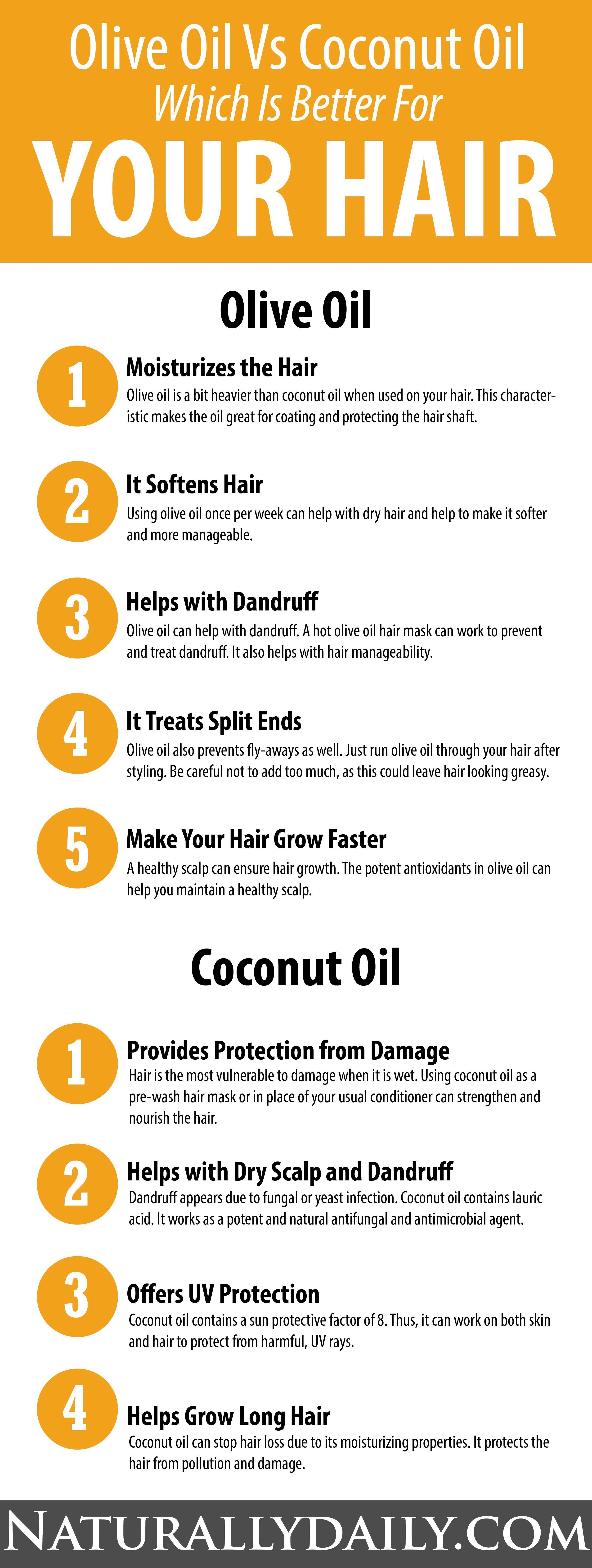 Olive Oil Vs Coconut Oil Which Is Better For Your Hair Olive Oil Or Coconut Oil Which On Olive Oil Hair Treatment Olive Oil Hair Coconut Oil Hair Treatment