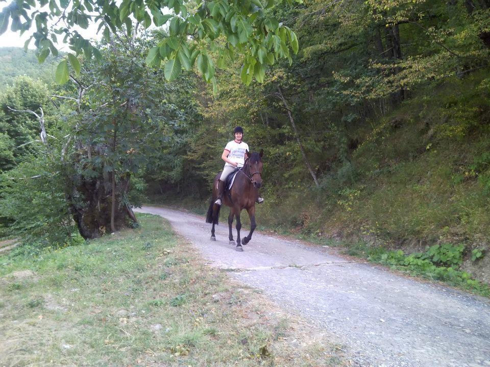relax durante la passeggiata in sella al nostro amico cavallo