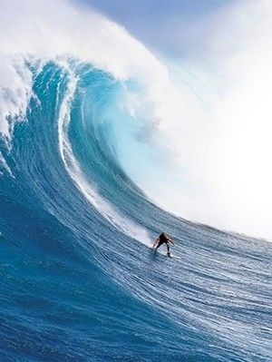 Blossom Bucket Surfs Up on Wave Decor