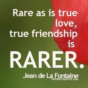 TRUE Friendship Quotes - Rare as is true love, true friendship is rarer.
