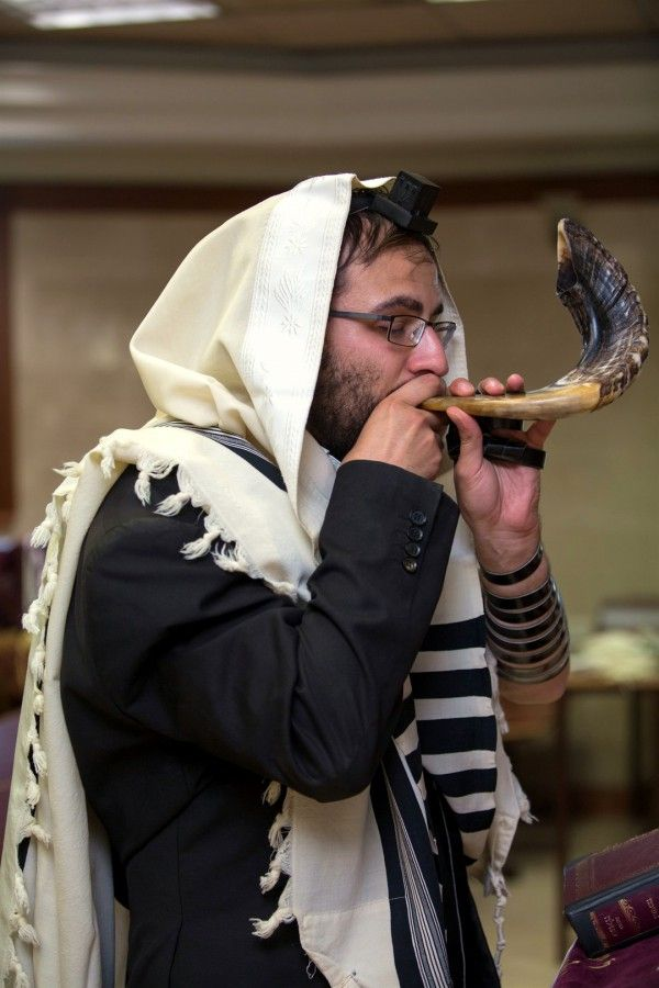jewish single men in temple Start your free trial of our jewish dating site  can search by criteria such as  religious affiliation, ethnic background, and attendance at synagogue or temple.