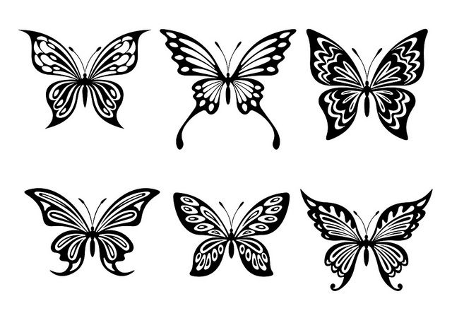 sample LARGE free Butterfly silhouette in black by
