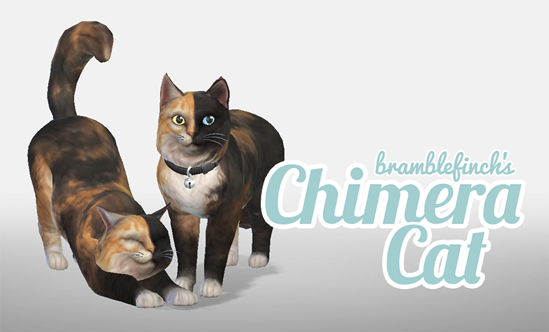 How To Get Cats To Like Each Other Sims 4