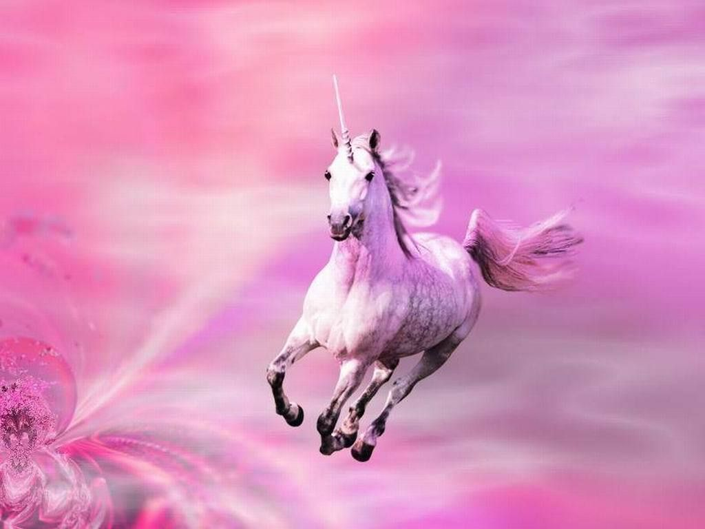 unicorns | Pink Shimmers - Unicorns Wallpaper (10796170 ...