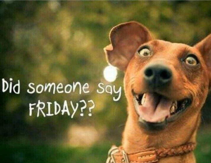 #happyfriday  Did someone say Friday