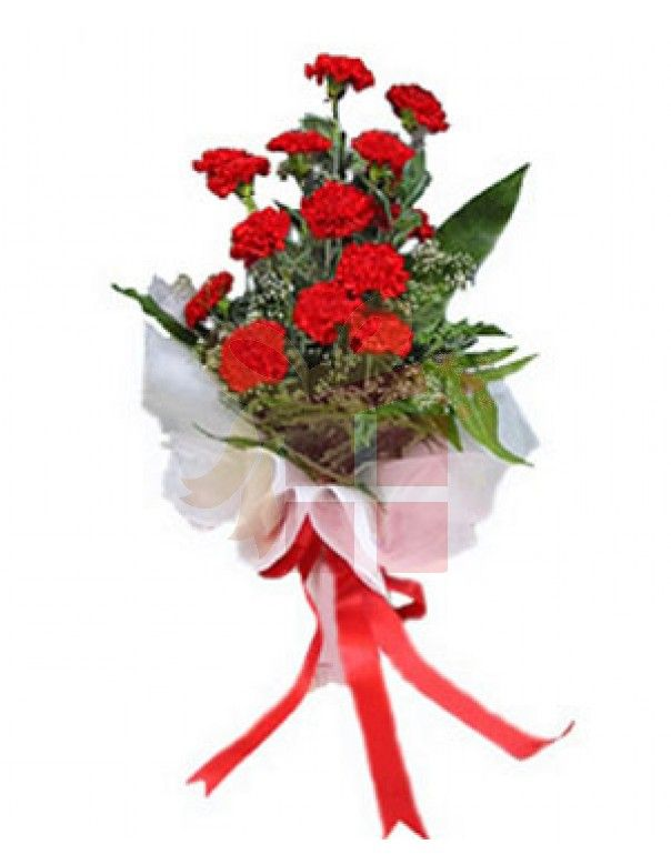 Preserved Real Red Carnations Arrangement Crystalline Rose Box Red Carnation Carnations How To Preserve Flowers
