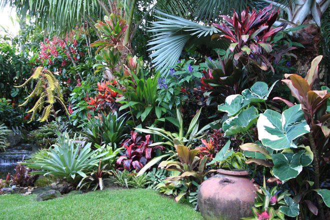 Dennis hundscheidt tropical garden sunnybank qld for Queensland garden design