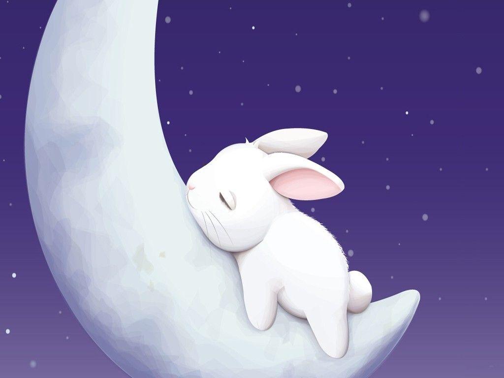 Sleeping Moon Bunny Desktop Wallpaper Cute Bunny Cartoon Bunny Wallpaper Rabbit Wallpaper