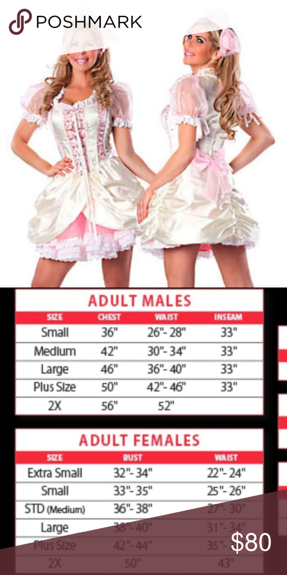90cfa1dc8c5 HALLOWEEN COSTUME SWEET MISS SOUTHERN BELLE DRESS COSTUME INCLUDES  DRESS  AND HAIR BOW COSTUME WILL