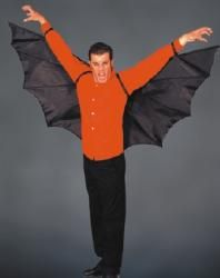 Bat Wings Adult Size  sc 1 st  Pinterest & Bat Wings Adult Size | Costume | Pinterest | Bat wings Bats and ...