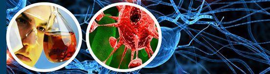 Biology Homework Help  Biology Assignment Help   Homework  Cell Biology Assignment Help