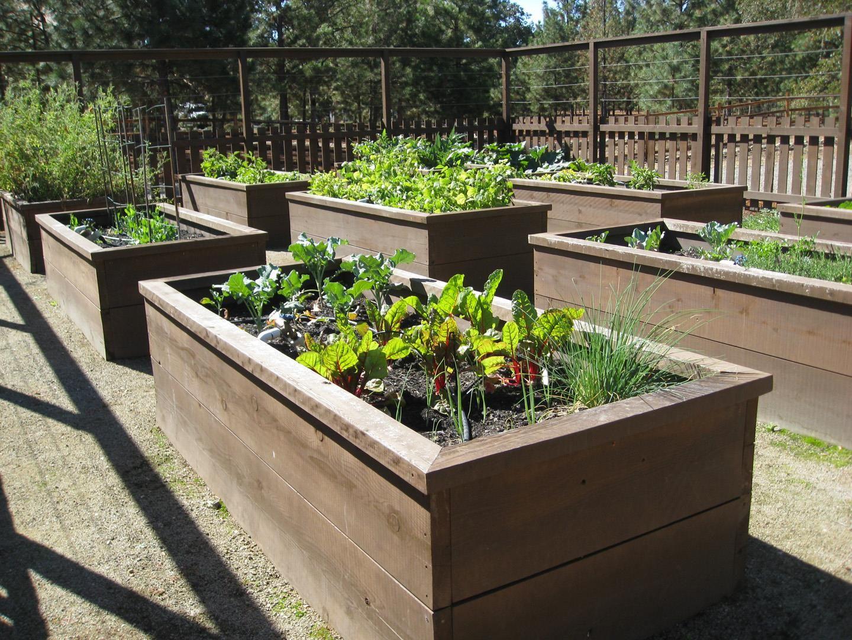 Do It Yourself Gardening With Raised Garden Beds | Gardens ...