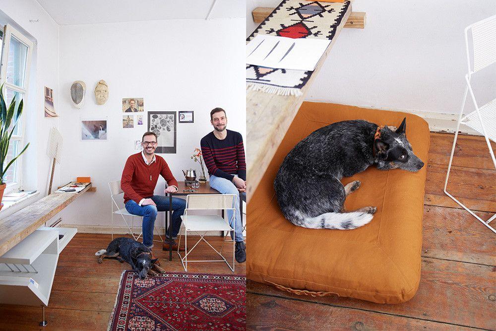 Features Dream Dog Bed in Pumpkin Designer dog beds, Dog
