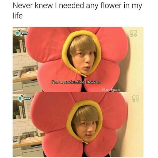 Where Can I Get This Flower From Ft Flower Jin Bts House Of Army Bts House Of Army Bts Boys Bts Jin