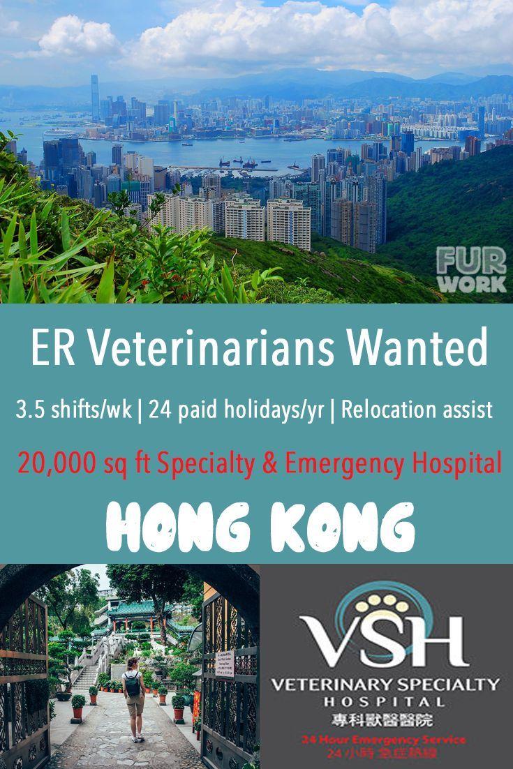 Er veterinarian job veterinary specialty hospital hong