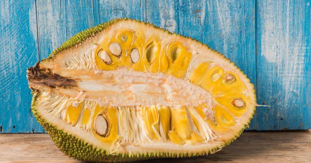 How to cook jackfruit how to cook jackfruit jackfruit