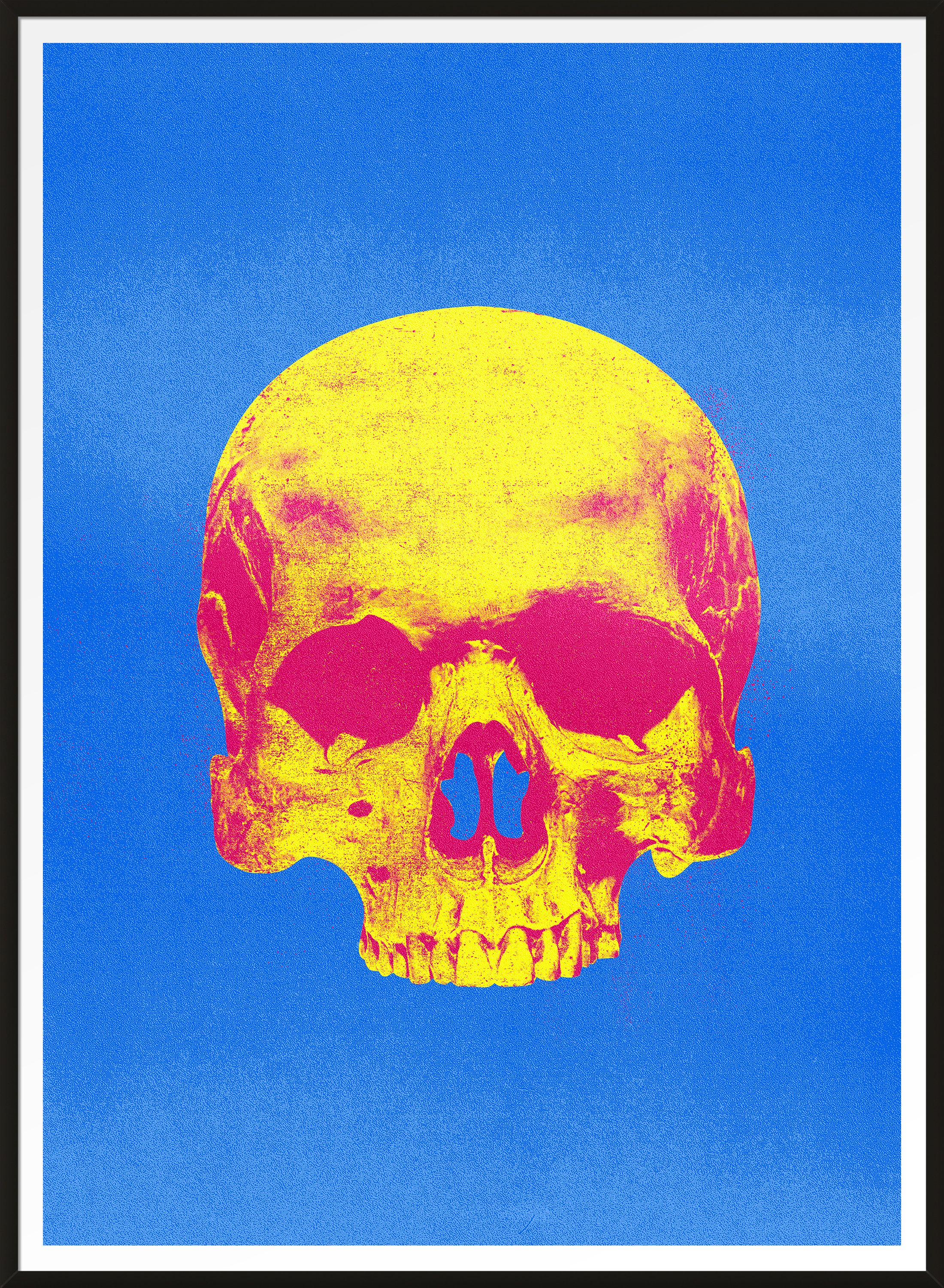 Pop Art Warhol Style Blue & Pink Skull Print (With images