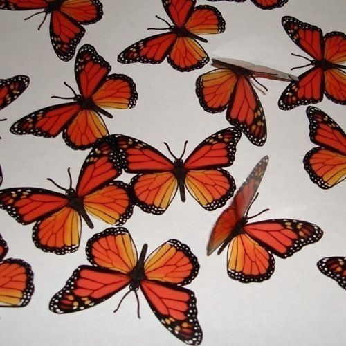 15x 3d Monarch Natural Butterflies Wall Decor By Butterflybazaar 15 00 Butterfly Wall Decor Butterfly Wall Butterfly Decorations