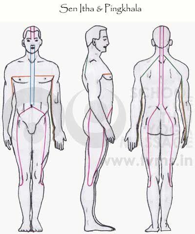 Sen Itha Pingkhala Thai Massage Thai Massage