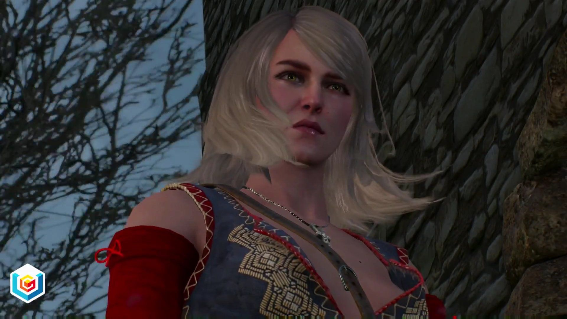 The Witcher 3 Wild Hunt For the Advancement of Learning