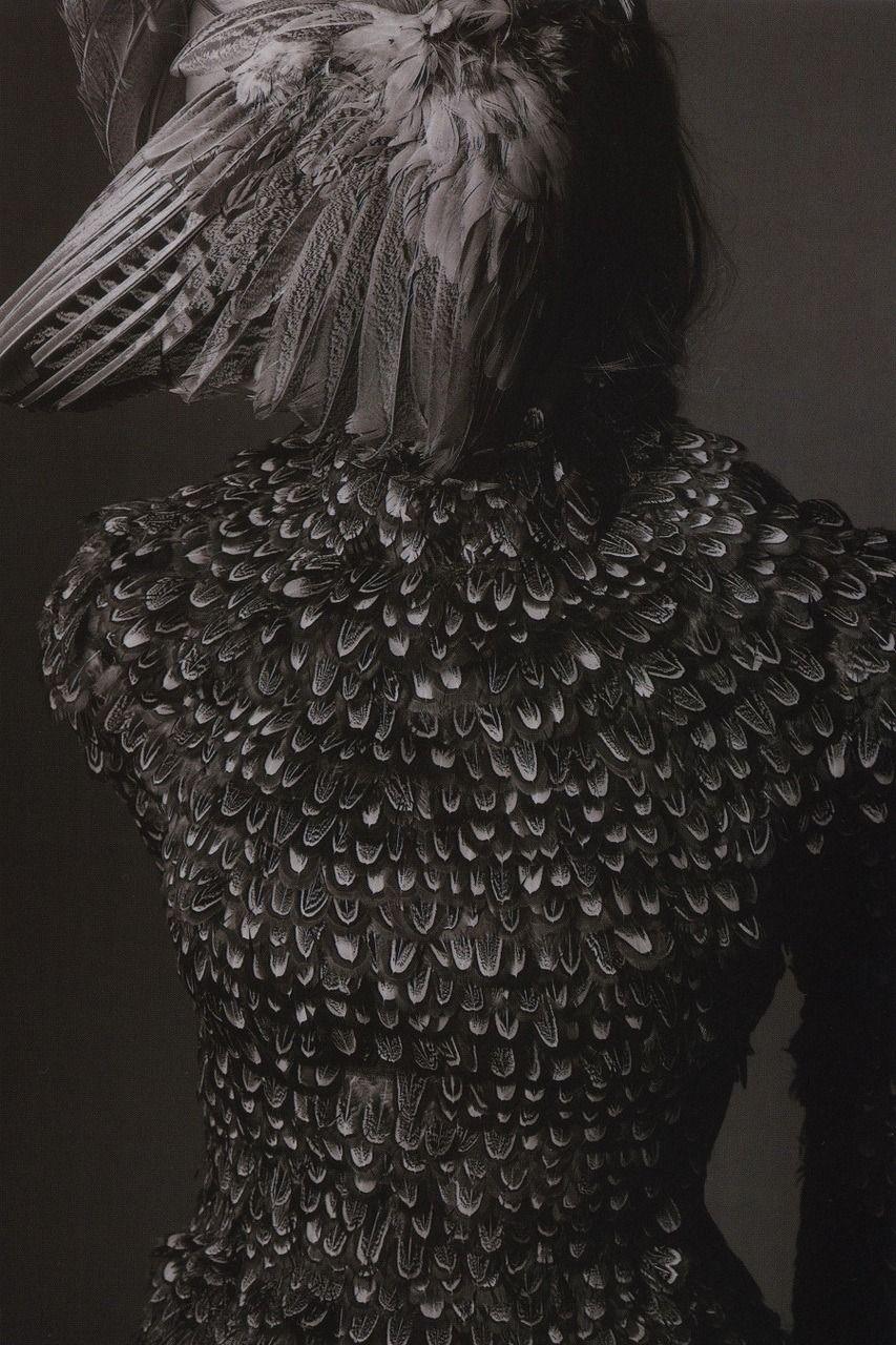 "0a88dbc27be ""Raven"" by Alexander McQueen for L Officiel"