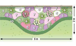 Zum Nachpflanzen: Rosen und Stauden gekonnt kombiniert #blumenbeetanlegen