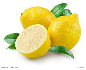 Die Zitrone – Experimentieren und Gärtnern mit Kinder in Kindergarten & Kita