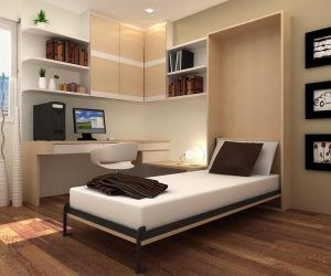 Cool Twin Size Murphy Beds With Desk Bed Ikea Modern