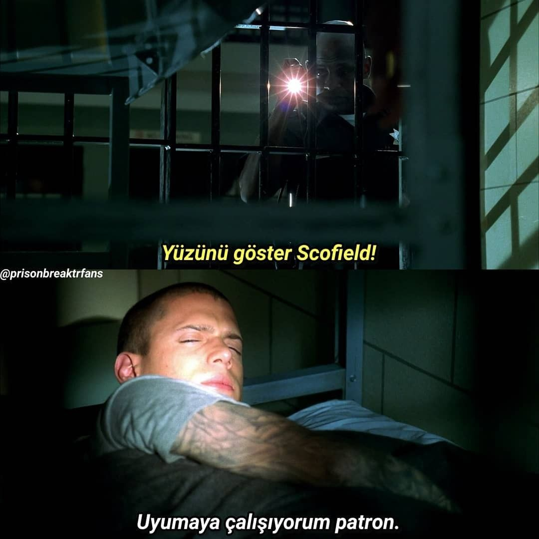 Wentworth Miller, Michael Scofield, Yabancı Dizi