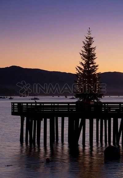 Lighted Christmas tree on Stearns Wharf in Santa Barbara, California