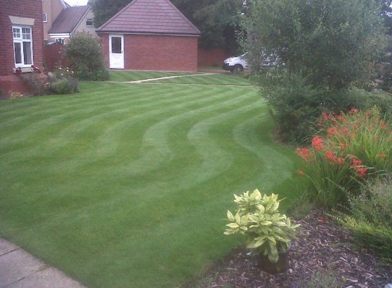 A perfect looking lawn in Solihull shows the effect of