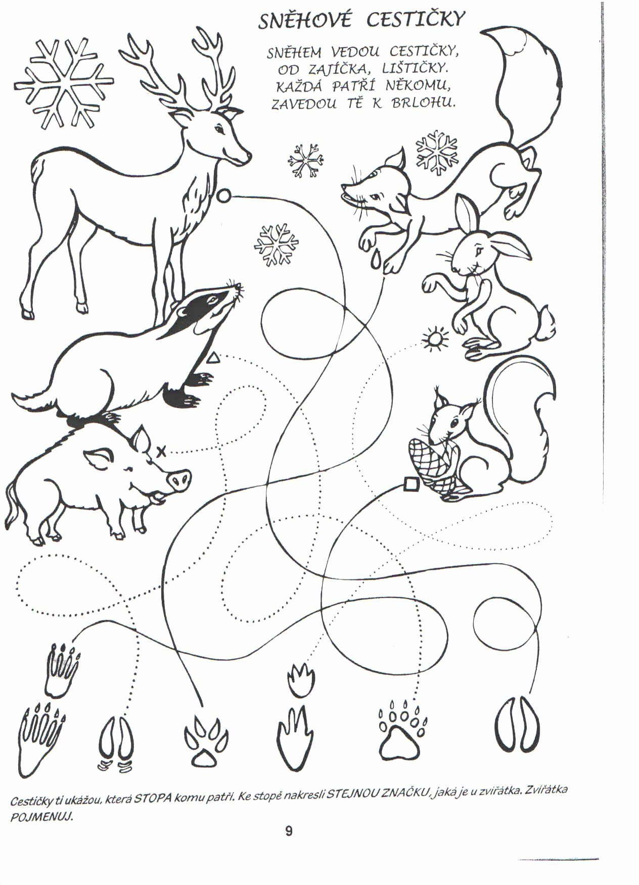 Animal Tracks Coloring Pages Coloring Pages Coloring Pages For Kids Animal Tracks [ 1752 x 1264 Pixel ]
