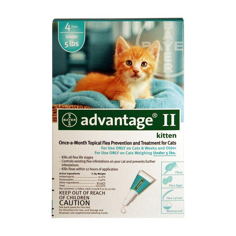 Bayer Advantage Ii Topical Flea Control For Kittens Cat Fleas Fleas Flea Treatment For Kittens