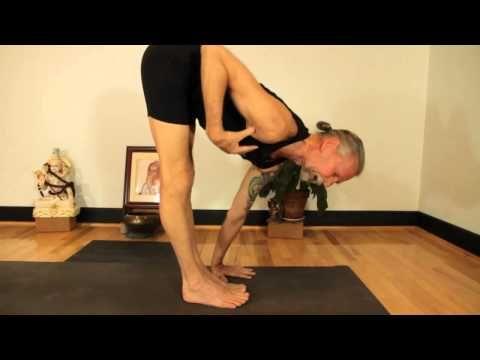 mark darby yoga jumping back to chaturanga dandasana